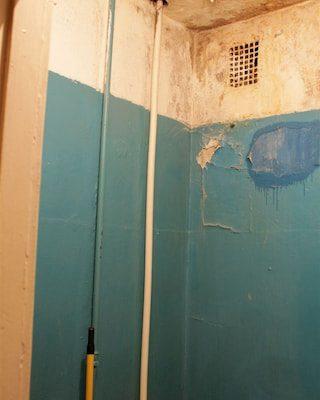 Фото появление грибка в ванной комнате